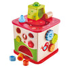 Friendship Activity Cube by Hape