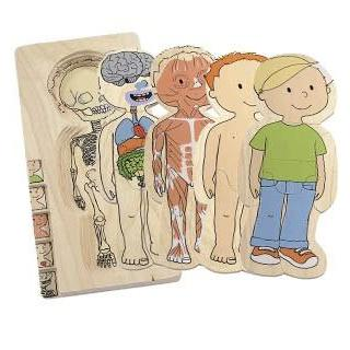 Your Body Puzzle Boy by Hape
