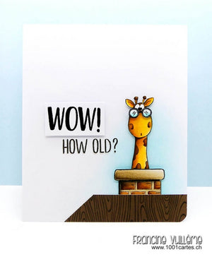 Guest Designer - Wow! How Old? by Francine Vuillème