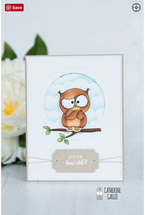 Owl Rather Be With You 4x6 Clear Stamp Set