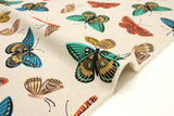 Cotton + Steel English Garden canvas - monarch natural - 50cm