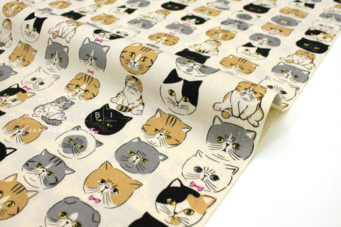 Japanese Fabric Kokka Cool Cats - natural - 50cm