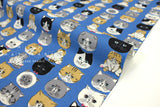 Japanese Fabric Kokka Cool Cats - blue - 50cm