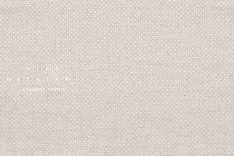 Cotton + Steel Sparkle Netorious canvas - metallic silver, natural - 50cm