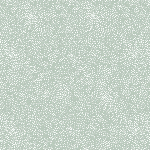 Cotton + Steel Rifle Paper Co. Basics - Menagerie Champagne - mint - fat quarter
