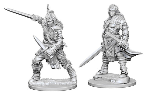 Pathfinder Minis: Human Male Fighter