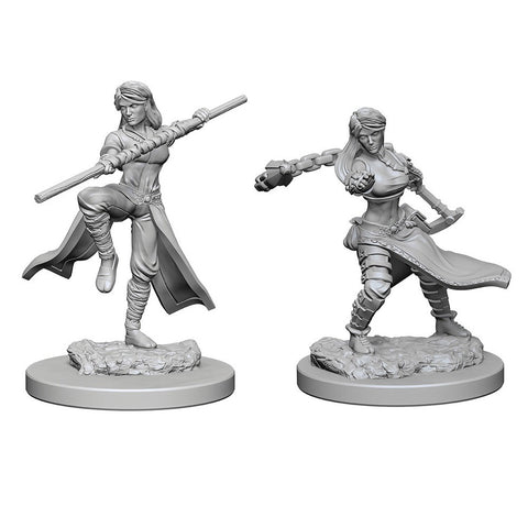 D&D Minis: Human Female Monk