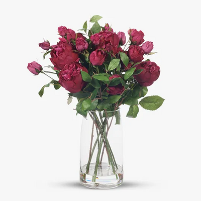 English Rose in Vase - Fuschia