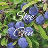 Sloe Gin Recipe