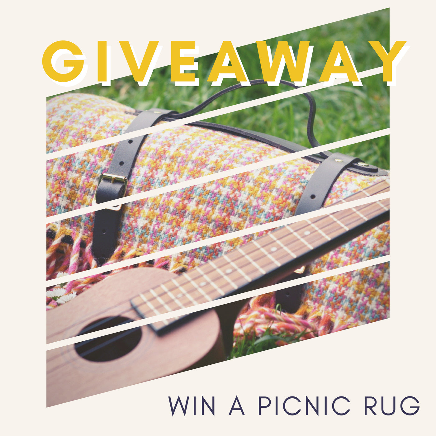 GIVEAWAY! Win a luxury picnic rug worth £99