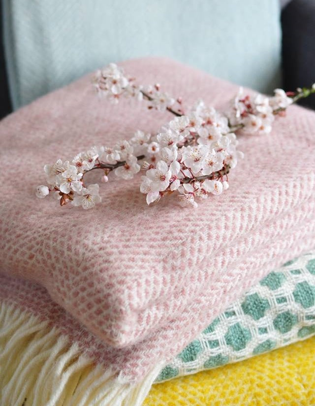 how to keep cut blossom fresh The British Blanket Company