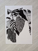 Load image into Gallery viewer, Monochrome Plant Art Print - Calathea Musaica