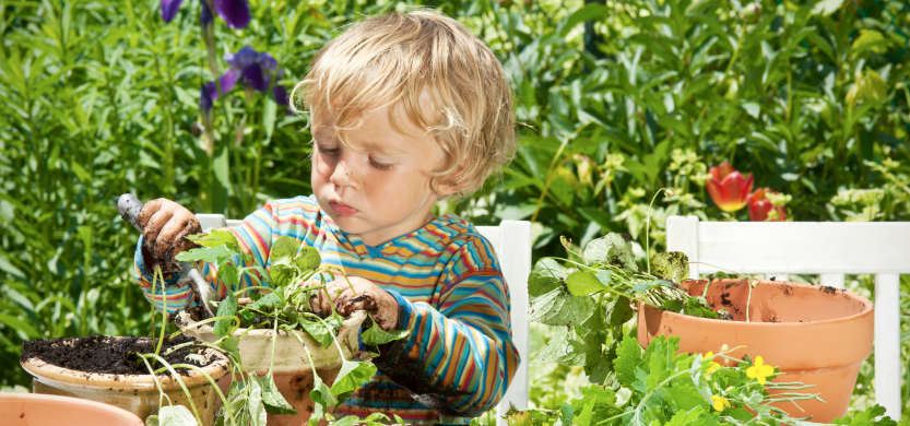 teach your kids how to grow herbs