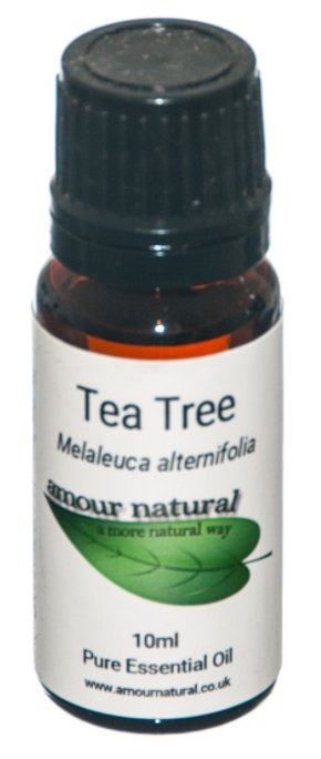 Amour Natural Tea Tree Essential Oil - 10ml - Penny Brohn Shop