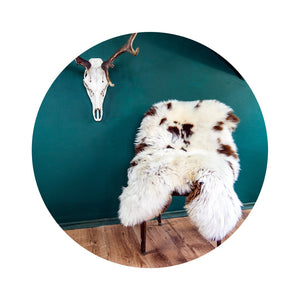 Natural Jacob Rare Breed Sheepskin Rug | BIG 115 cm