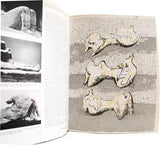 Moore - HOMMAGE A HENRY MOORE. - 1972. XXe Siecle. Barevná orig. litografie; 310x240; HENRY MOORE.