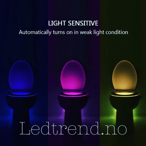 "LED-lys ""Nightwatch"" til toalettet 