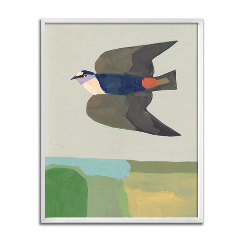 Cliff Swallow Over Field