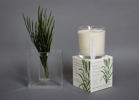 Seed Soy Candle (grows plant!)