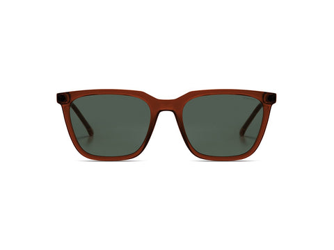 Bronze Jay Sunglasses