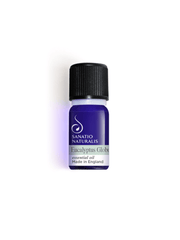 Eucalyptus Essential Oil - Sanatio Naturalis - £15.00