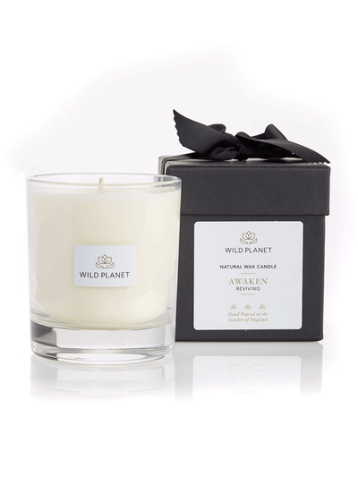 Wild Planet Candles Awaken Luxury Aromatherapy Soy Candle - Ginger, Eucalyptus & Grapefruit