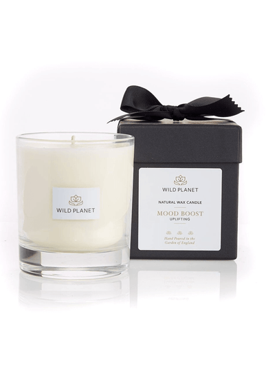 Wild Planet Candles Mood Boost Luxury Aromatherapy Soy Candle - Lime, Mandarin & Rosemary
