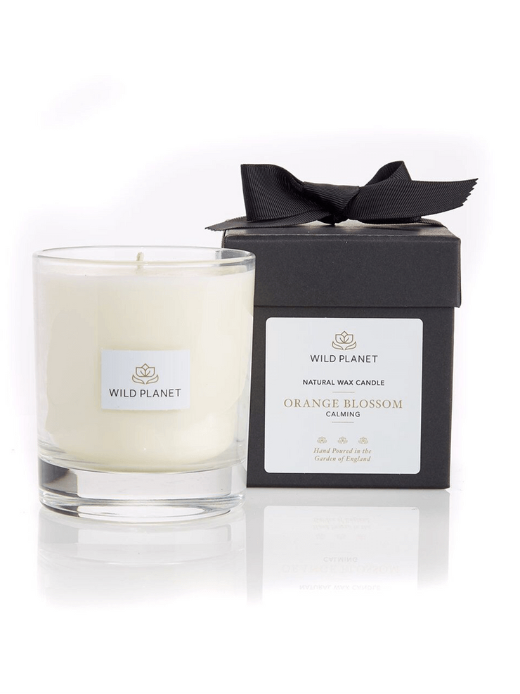 Wild Planet Candles Orange Blossom Luxury Aromatherapy Soy Candle - Mandarin, Sweet Orange & Petitgrain