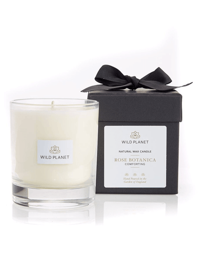 Wild Planet Candles Rose Botanica Luxury Aromatherapy Soy Candle - Rose & Bergamot