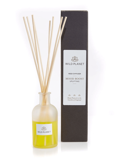 Wild Planet Diffusers Mood Boost Luxury Aroma Reed Diffuser - Lime, Mandarin & Rosemary