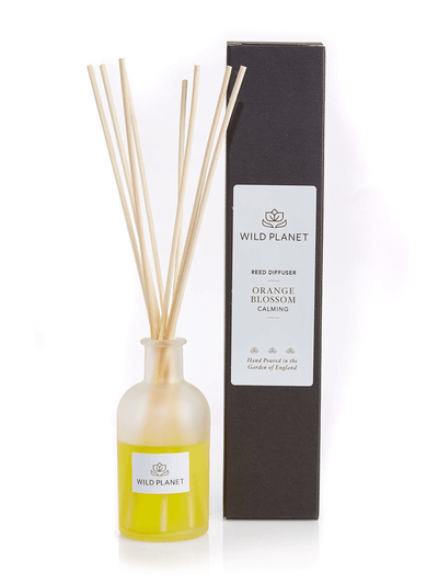 Wild Planet Diffusers Orange Blossom Luxury Aroma Reed Diffuser - Mandarin, Sweet Orange & Petitgrain