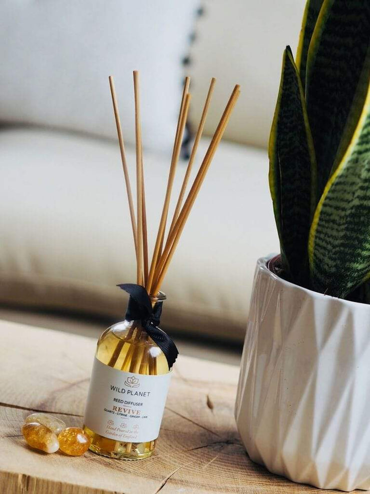 Wild Planet Diffusers Revive - Crystal Infused Reed Diffuser with Citrine
