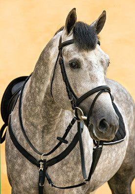 Horseware's Amigo Cob Leather Bridle