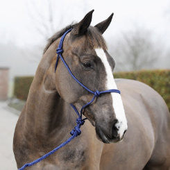 Horze Caspar Halter with Lead