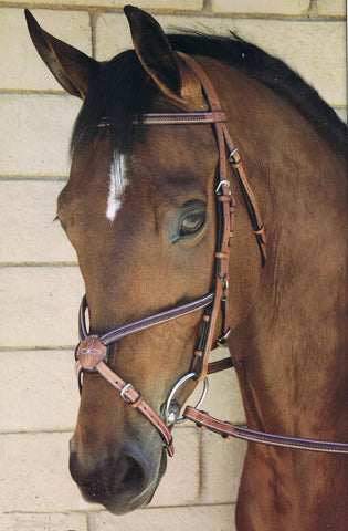 Bobby's English Tack Figure 8 Braided Bridle