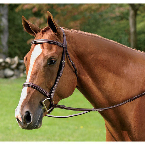 Vespucci Fancy Raised Hunt Bridle