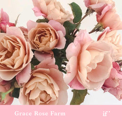 Ordering and Designing with Garden Roses with Grace Rose Farm and Flowerwild