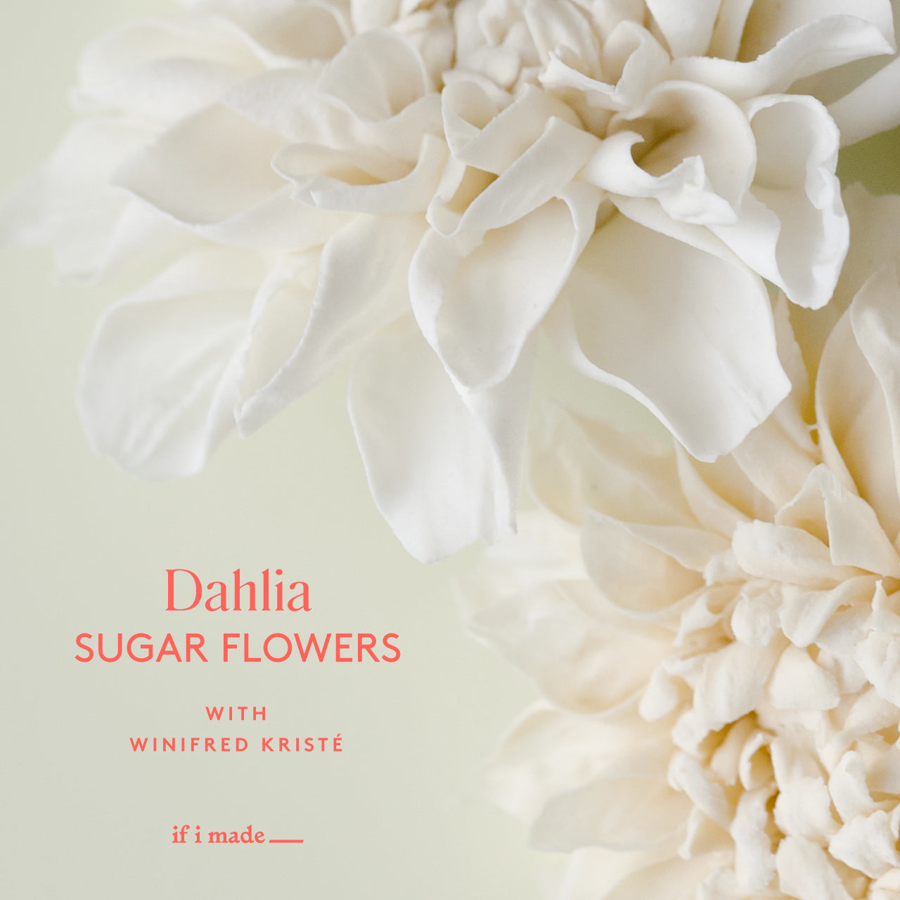 Dahlia Sugar Flower with Winifred Kriste (SPP0321) - 4 payments of $99