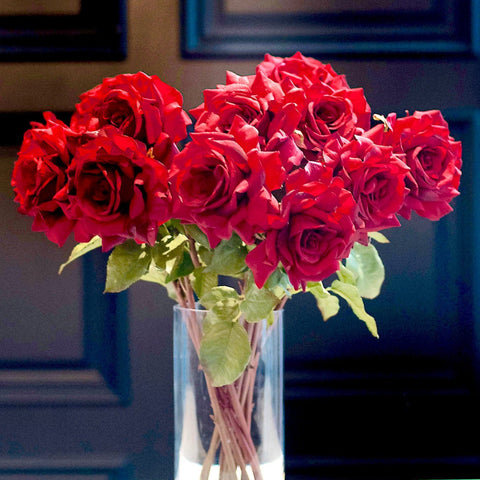 red hybrid tea roses - bunch of 6 stems