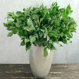 Artificial flowers luxury faux silk green ficus leaf lifelike realistic faux flowers buy online from Amaranthine Blooms UK