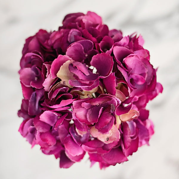 Artificial flowers luxury faux silk pink fuchsia hydrangea lifelike realistic faux flowers buy online from Amaranthine Blooms UK