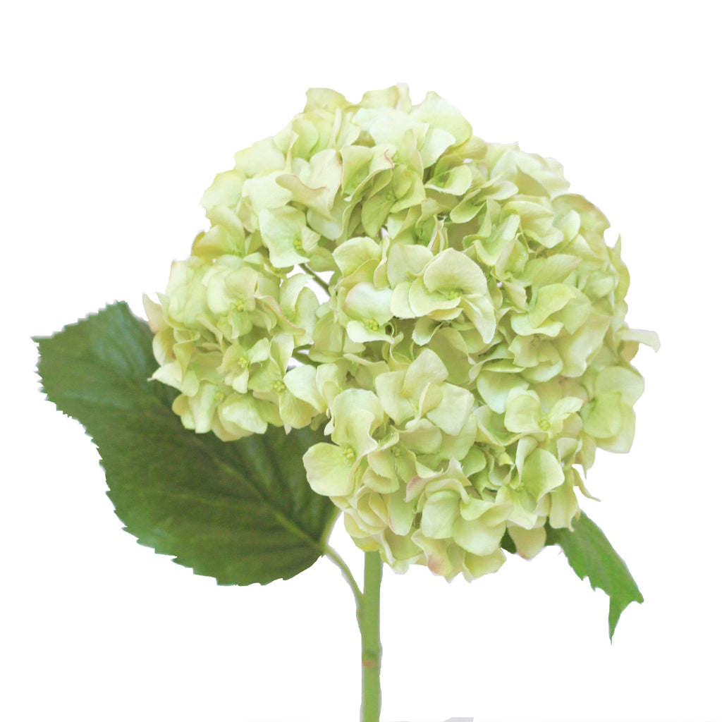 pale green hydrangea luxury realistic lifelike artificial silk flower from Amaranthine Blooms in UK, Hong Kong, Australia