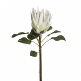 Artificial flowers luxury silk white king protea lifelike realistic faux flowers Amaranthine Blooms UK