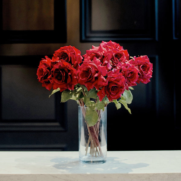 red hybrid tea roses - bunch of 12 stems