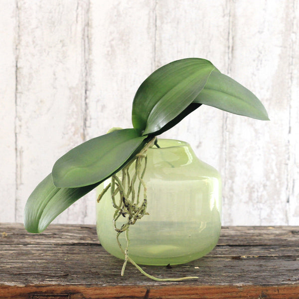 artificial flowers luxury faux silk green orchid leaves roots lifelike realistic faux flowers buy online from Amaranthine Blooms UK