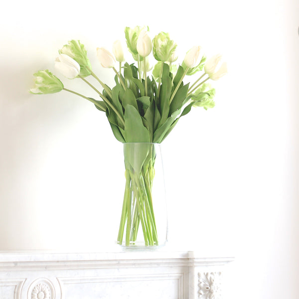 Green Parrot Tulip Bunch Of 6 Stems