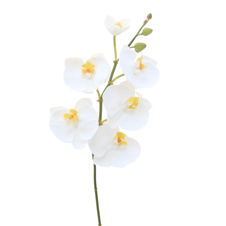 artificial flowers luxury faux silk white phalaenopsis orchid stem lifelike realistic faux flowers buy online from Amaranthine Blooms Hong Kong UK