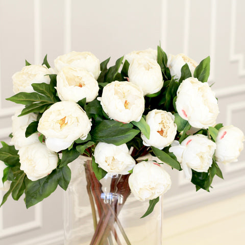 white 2 bloom, real touch peony - bunch of 6 stems