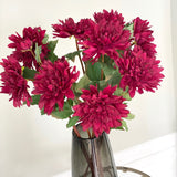 burgundy dahlia - bunch of 6 stems