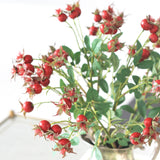 red rose hips - bunch of 6 stems